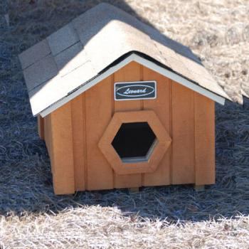 Leonard Cat House with hexagon door
