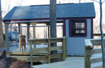 Dog Condo with covered fenced porched and full size shelter with dog and adult side door